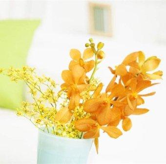 Цветы в интерьере - фото