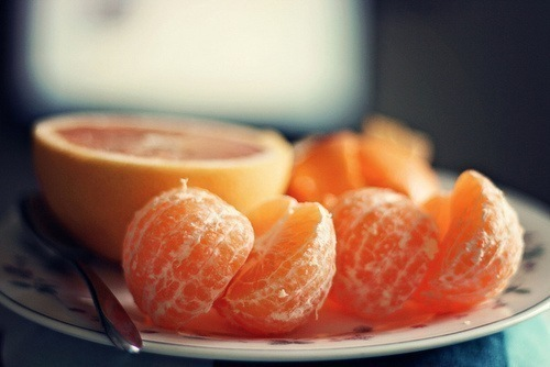 Как вырастить мандарин из косточки - фото